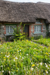 old traditional Irish cottage with overgrown lawn