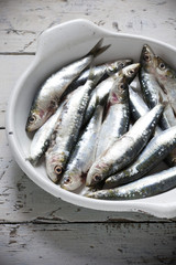sardines on enamelled tray on rustic background