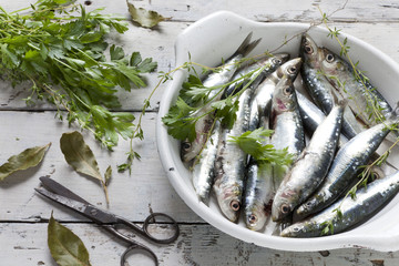 sardines on dish with parsley, bay leaves and thyme