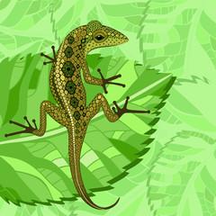 lizard in the green