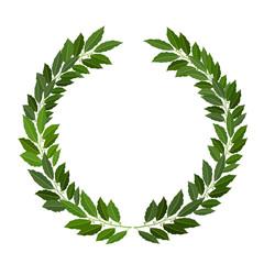 laurel wreath on white background