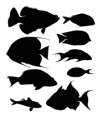 fish vector silhouettes