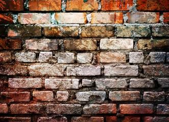 Fototapete - grunge brick wall