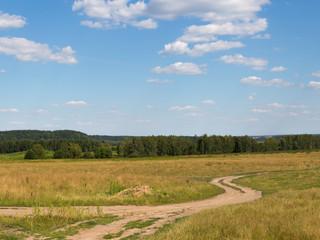 dirt road in  summer field