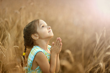 Girl prays in wheat field