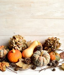 Pumpkins with dried hydrangeas
