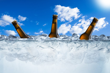Beer Bottles on Ice Cubes