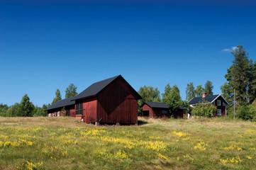 Schweden im Sommer