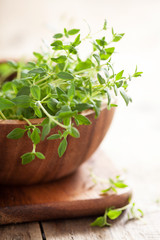 fresh thyme herb in wooden bowl