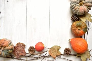 pumpkin,apple and fall leaf.frame