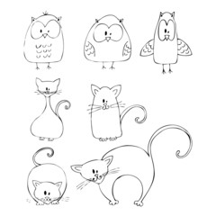 illustrated cats and owls