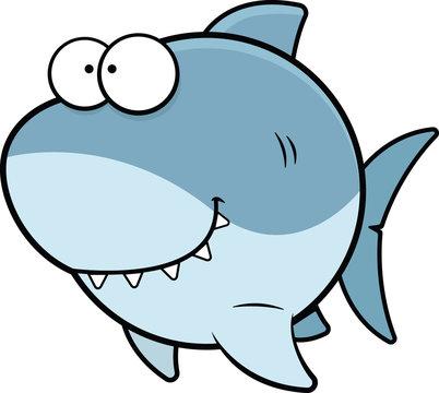 Cartoon Shark Happy