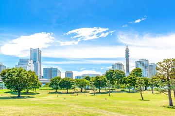 Landscape grass prospects buildings of landmark in summer