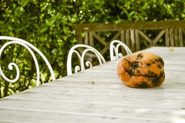 Zucca sul tavolo da giardino