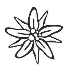 edelweiss0507a