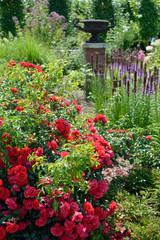Obraz In the garden - fototapety do salonu