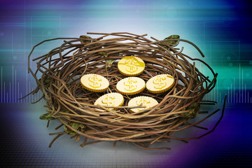Dollar coins in being protected in a nest. Conceptual design