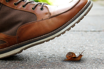 boot and snail