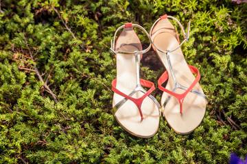 sandals, women's elegant shoes in nature