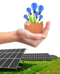 Solar panels and hand holding light bulbs growing out of the egg