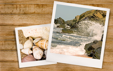 Polaroid photo of sea and clams in the summer