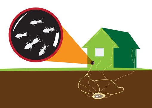 Termites attack home from underground. Vector and Raster