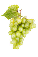fresh white grapes with leaves