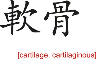 Chinese Sign for cartilage, cartilaginous