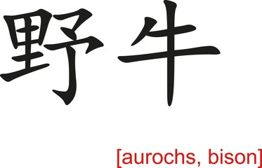 Chinese Sign for aurochs, bison