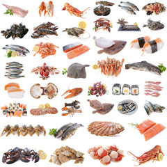 Foto auf Leinwand Fisch seafood, fish and shellfish