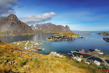 Wall Mural - town of Reine by the fjord on Lofoten islands in Norway