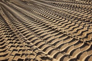 tire tracks on a beach