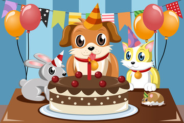 Pets birthday