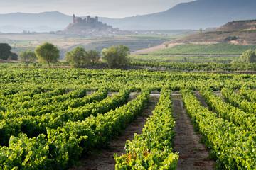 Papiers peints Vignoble Vineyard, San Vicente de la Sonsierra as background, La Rioja
