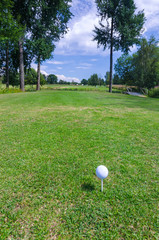 Vertical view from Swedish golf course
