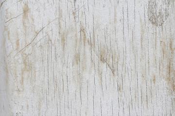 Grung white wood