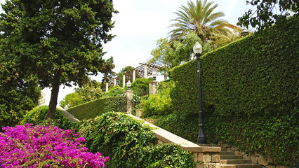 Buscar fotos jardins del teatre grec - Jardines de montjuic ...