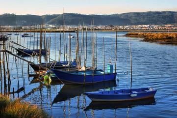 Barcos em Darque