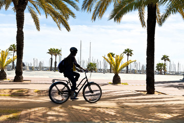 Cyclists on the seaside promenade.