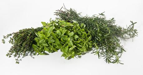 variety garden herbs