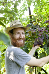 young hipster bearded smiling boy farmer working on vineyard