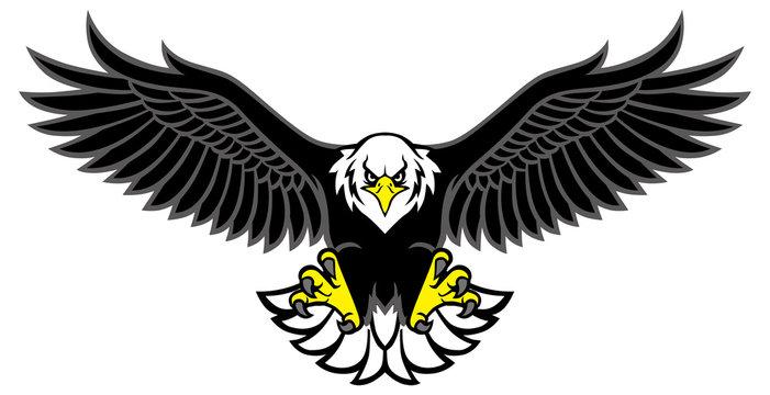 eagle mascot spread the wings