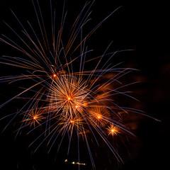 Fireworks on the black sky background.