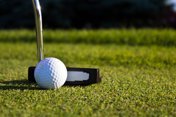 Golf ball and putter on the green