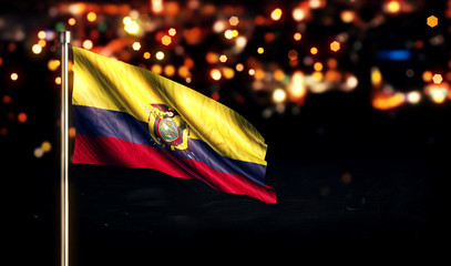 Ecuador National Flag City Light Night Bokeh Background 3D