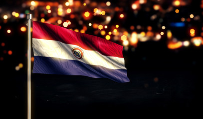 Paraguay National Flag City Light Night Bokeh Background 3D