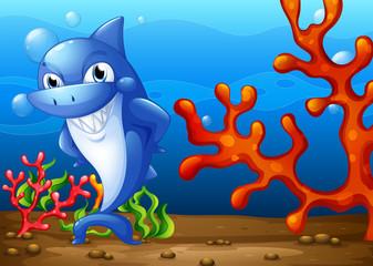 A happy shark underwater