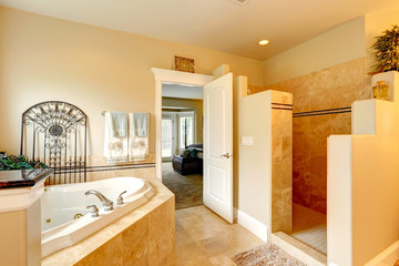 Luxury bathroom with whirlpool and shower