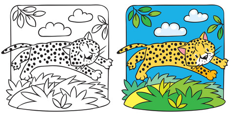 Little cheetah or jaguar coloring book