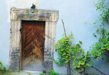 drzwi w ogrodzie